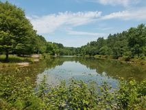 Lake with trees and vegetation. Medium sized lake with trees and plants and vegetation Stock Photography