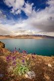 Lake Tso Moriri Stock Photography