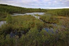 lake in tundra above Arctic Circle Royalty Free Stock Photos