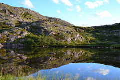 Lake in tundra. Lake in Murmansk region summer day Royalty Free Stock Photography
