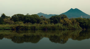 Lake in Tunisia. A small lake in Tunisia located in Rades .A paronamic view :mountain,a forest ,and reflection on water Royalty Free Stock Photography