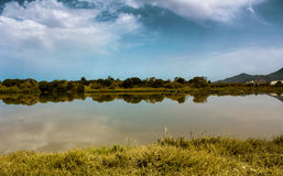Lake in Tunisia. A small lake in Tunisia located in Rades .A paronamic view :mountain,a forest ,and reflection on water Stock Images