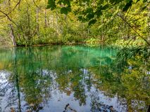 The lake with turquoise water in the fall forest stock photo