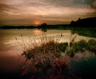 Lake at twilight. Lake in sepia at twilight with clumps of grass and reeds in the foreground Royalty Free Stock Photos
