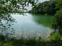 Lake two. Trees Royalty Free Stock Image