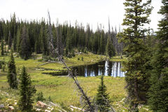 Lake in the Uinta Mountains. Photograph of a small lake in the Uinta Mountains of Utah Stock Photography