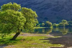 Lake Ullswater scenic. Scenic view of trees on shore of Lake Ullswater. Lake District National Park, Cumbria, England stock images