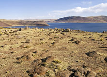 Lake Umayo in the Peruvian Andes Royalty Free Stock Photo