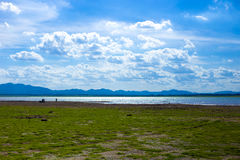 Lake under blue sky on sunny day. Stock Image