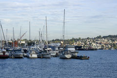 Lake Union Seattle Royalty Free Stock Images