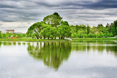 Lake at the urban park, Moscow Royalty Free Stock Photo