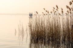 lake varese Royaltyfria Foton
