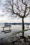 Lake of Varese, flooding in Gavirate. Varese lake flooding in Gavirate, winter season royalty free stock photos