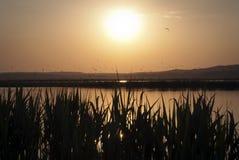 Lake Velence på slutet av dagen Arkivfoton
