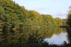 Lake in Veluwe forest in the Netherland during autumn. Landscape overview of Lake in Veluwe forest during autumn Royalty Free Stock Photo