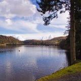 Lake Verny Royalty Free Stock Photos
