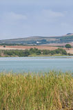 Lake in vertical. Lake surrounded by vegetation located in the Spanish town of Arcos de la Frontera, fields are the background, on a cloudy day Stock Images