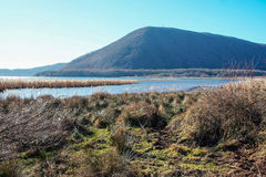 Lake Vico natural reseve. Natural reserve of lake Vico, Viterbo, Lazio Italy Stock Images