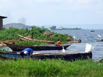 Lake victoria Stock Image