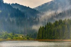 Lake Vidra in Romania Stock Photography