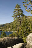 Lake view. Calm lake through the spaces between the branches of a tree and some boulders in the foreground royalty free stock images