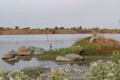 Lake view from the bank with small rock and coastline Royalty Free Stock Photos