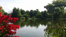 Lake View. Centennial Park Tennessee royalty free stock photo