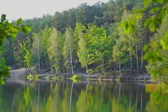 Lake. View of the lake and forest Royalty Free Stock Images