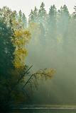 Lake view in misty morning Stock Photography