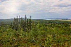 Lake View Pyaozero. North Karelia. Russia Royalty Free Stock Photos