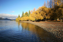 Lake view at Queenstown Royalty Free Stock Photography