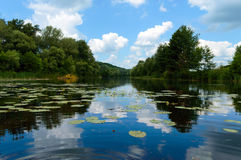 Lake View (River). On the banks of the green dense forest. Lake View (River). On the banks of the green dense forest Royalty Free Stock Photo