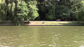 On the lake. View on shore from the lake stock video footage