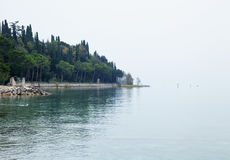 Lake view with trees Royalty Free Stock Images