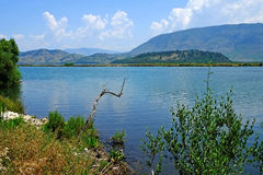 Lake Vivari Albania Royalty Free Stock Photo