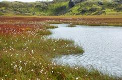 Lake in Vondugil area of Landmannalaugar Stock Photography