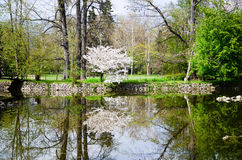 Lake in Vrana Palace at spring time. Vrana Palace ,Sofia .a former royal palace, located on the outskirts of Sofia, the capital of Bulgaria. It is today the stock images