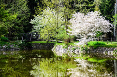 Lake in Vrana Palace at spring time. Vrana Palace ,Sofia .a former royal palace, located on the outskirts of Sofia, the capital of Bulgaria. It is today the stock photo