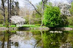 Lake in Vrana Palace at spring time. Vrana Palace ,Sofia .a former royal palace, located on the outskirts of Sofia, the capital of Bulgaria. It is today the royalty free stock photo