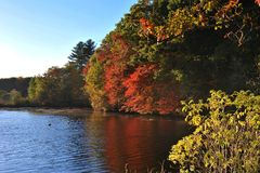 Lake Waban. A corner of Lake Waban at Wellesley College near Boston, Massachusetts, USA Stock Image