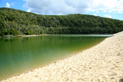 Lake Wabby - Fraser Island stock photography