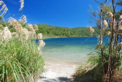 Lake Waikaremoana, Te Urewera National Park, New Zealand Stock Photo