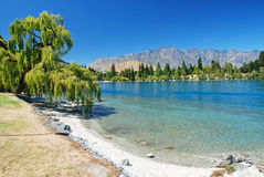 Lake Wakatipu beach Royalty Free Stock Images