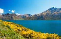 Lake Wakatipu Royalty Free Stock Images