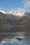 Lake Wakatipu New Zealand Stock Image