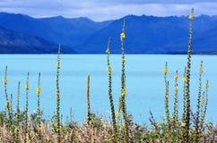 Lake Wakatipu New Zealand NZ NZL Stock Photos