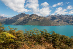 Lake Wakatipu Royalty Free Stock Image