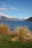 Lake Wakatipu from Queenstown New Zealand Royalty Free Stock Images