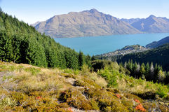 Lake Wakatipu, Queenstown, New Zealand Royalty Free Stock Images