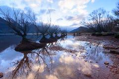 Lake Wakatipu. Reflection in Lake Wakatipu, Glenorchy, Queen`s town, New Zealand Stock Images